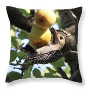 Red-bellied Woodpecker - Yummy Pears Throw Pillow