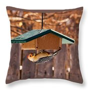 Red-bellied Woodpecker At Lunch Throw Pillow