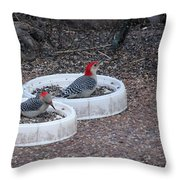 Red Bellied Woodpeckers Male And Female Throw Pillow