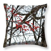 Red Berries White Sky Throw Pillow