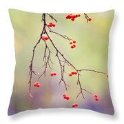 Red Berrries Throw Pillow