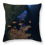Red Bigeye Fish And Sea Fan In An Throw Pillow by Mathieu Meur