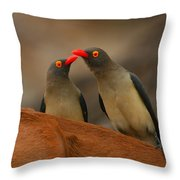 Red-billed Oxpeckers Throw Pillow