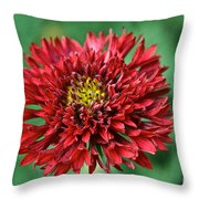 Red Blanket Flower Throw Pillow