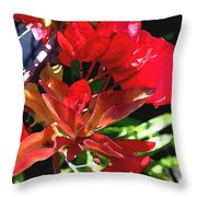 Red Bougainvillea Throw Pillow