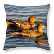 Red Breasted Mergansers Throw Pillow