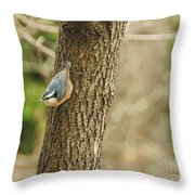 Red-breasted Nuthatch Throw Pillow