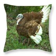 Red Burbon Turkey Throw Pillow