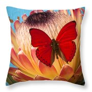 Red Butterfly On Protea Throw Pillow