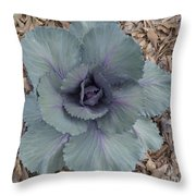 Red Cabbage Throw Pillow