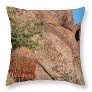 Red Cactus Rock Throw Pillow