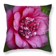 Red Camellia Throw Pillow by Teresa Mucha
