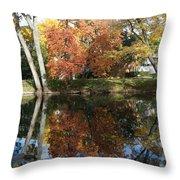 Red Cedar Reflections Throw Pillow