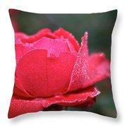 Red Crystal Petals Throw Pillow