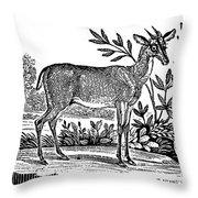 Red Deer Throw Pillow by Granger