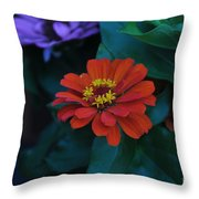 Red Delia Throw Pillow