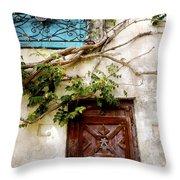 Red Door Blue Door Throw Pillow