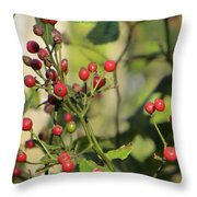 Red Dots Throw Pillow