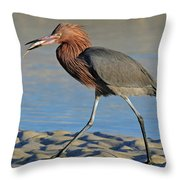 Red Egret With Fish Throw Pillow