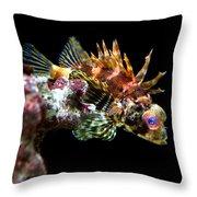 Red Eyed Scorpion Fish Throw Pillow