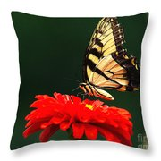 Red Flower And Butterfly Throw Pillow