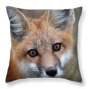 Red Fox 352 Throw Pillow