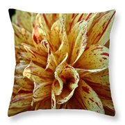 Red Freckles Throw Pillow