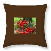 Red Fresh Plums In The Basket Throw Pillow