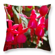 Red Fuchsias Throw Pillow