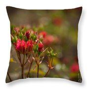 Red Glorious Throw Pillow