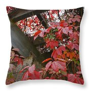 Red Grape Leaves And Beams Throw Pillow