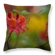Red Groups Throw Pillow