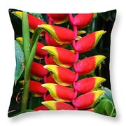 Red Heliconia Throw Pillow