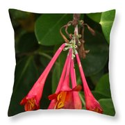 Red Honeysuckle Blossoms 1 Throw Pillow