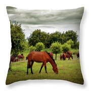 Red Horses Throw Pillow