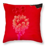 Red Hot Hibiscus Throw Pillow