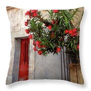 Red In Provence Throw Pillow