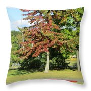 Red In Sunlight Throw Pillow