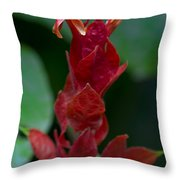 Red Inferno Throw Pillow