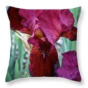Red Iris Duo Throw Pillow