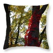 Red Ivy Climb Throw Pillow