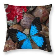 Red Leaf And Blue Butterfly Throw Pillow