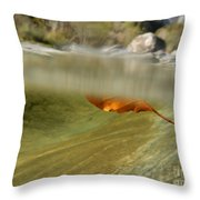 Red Leaf Floating Throw Pillow