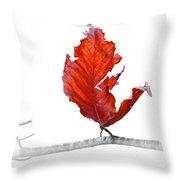 Red Leaf Of Autumn On White Throw Pillow