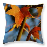 Red Leaves In Winter Sunset Throw Pillow