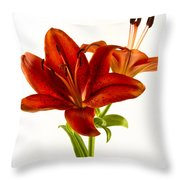 Red Lily Number One Square Throw Pillow