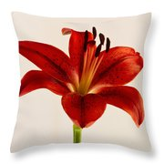 Red Lily Number Three Throw Pillow