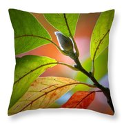 Red Magnolia Leaves With Bud Throw Pillow