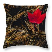 Red Maple Leaf On Pine Needles In Pool Throw Pillow by Mike Grandmailson