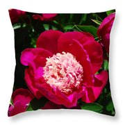 Red Peony Flowers Series 3 Throw Pillow